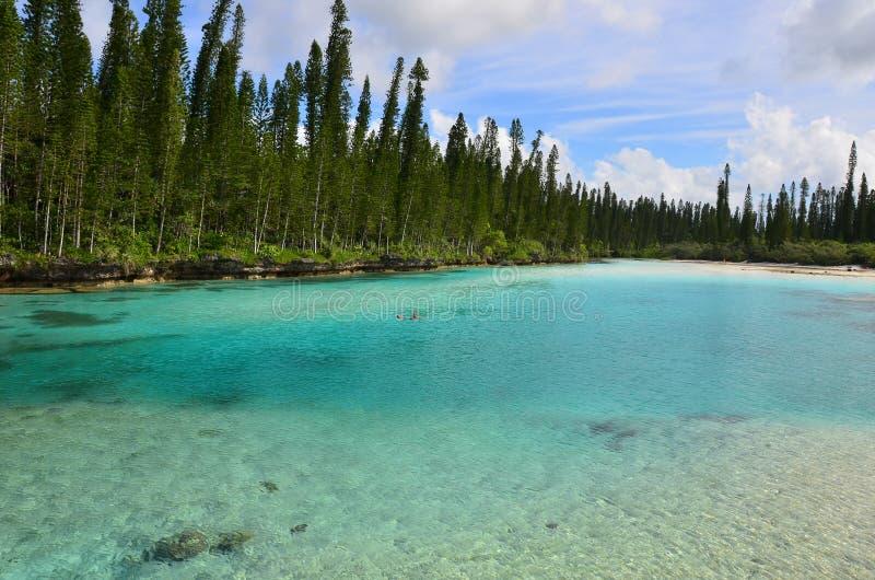 Piscina natural de Baie Oro de la isla del pino fotografía de archivo