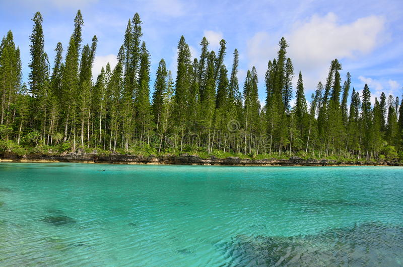 Piscina natural de Baie Oro de la isla del pino de la laguna fotografía de archivo libre de regalías