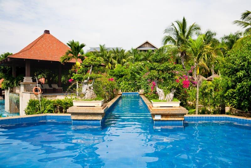Piscina no jardim tropical fotografia de stock royalty free