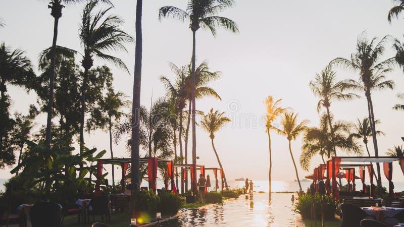 Piscina que reflete o sol e as palmeiras imagem de stock royalty free