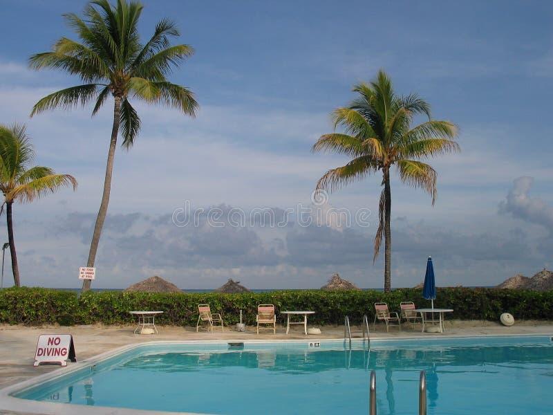 Piscina tropical fotos de archivo