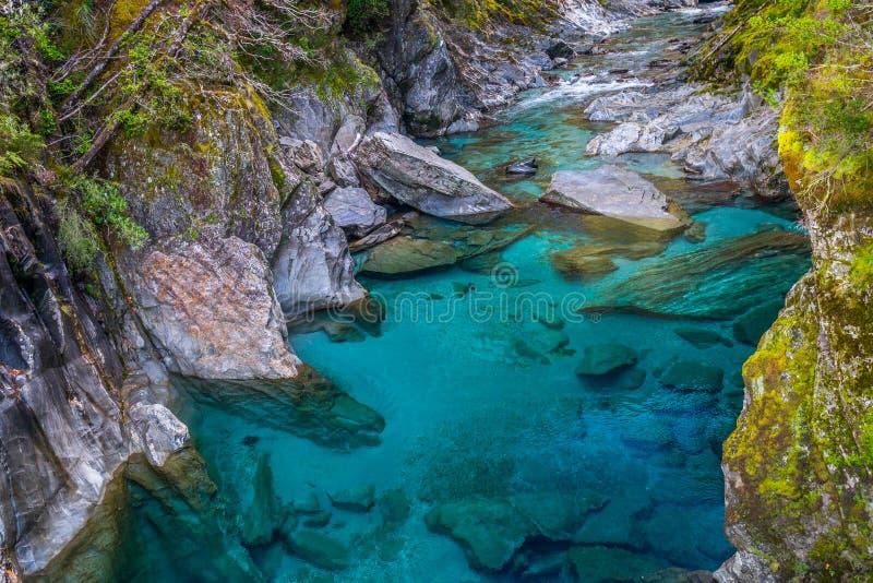 Piscinas azules, Nueva Zelanda imagen de archivo libre de regalías