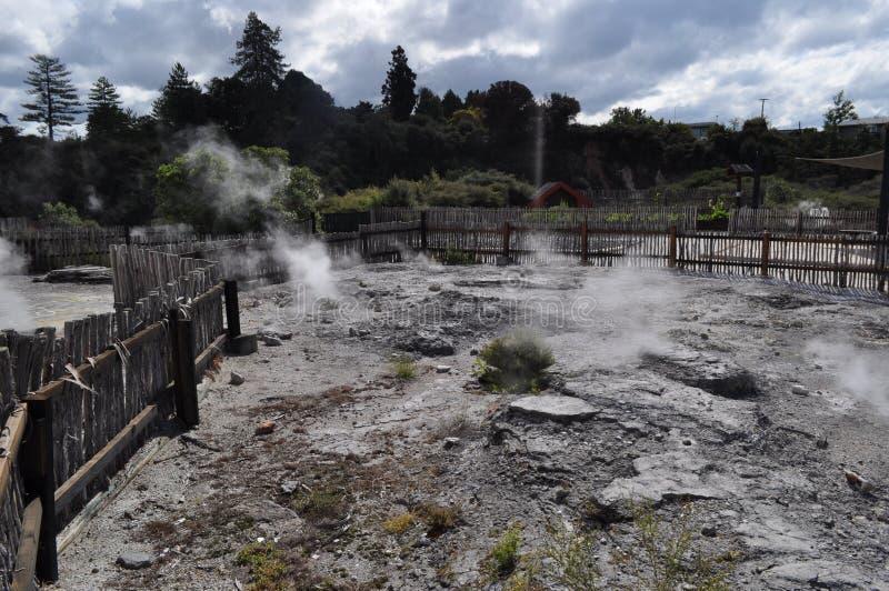 Piscinas de ebullición del fango de las aguas termales de Rotorua Nueva Zelanda fotos de archivo libres de regalías