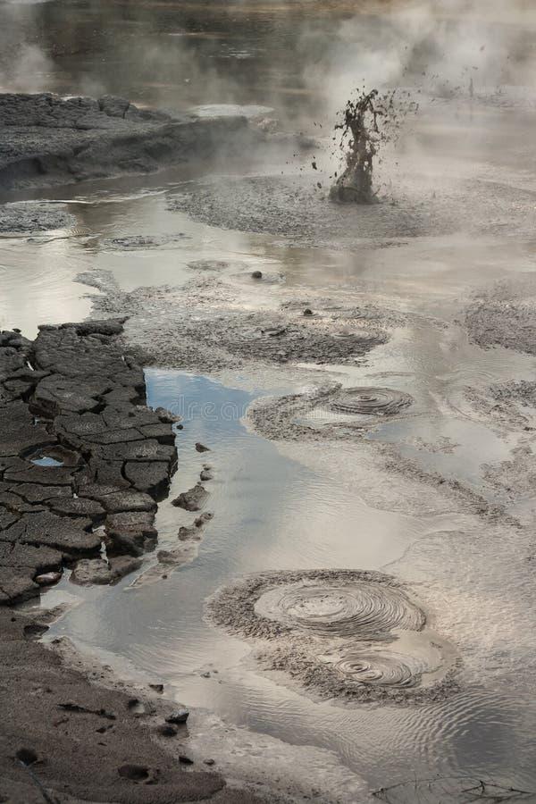 Piscinas del fango de Waimangu foto de archivo