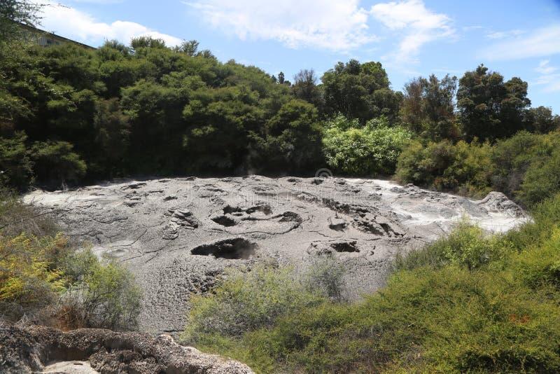 Piscine active de boue en Te Puia Thermal Reserve dans Rotorua, Nouvelle-Zélande photos stock