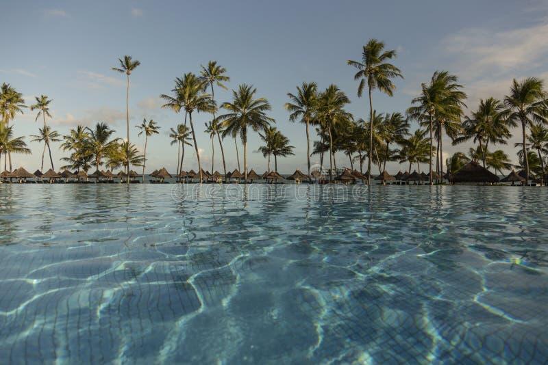 Piscine avec des palmiers près de l'océan pendant un beau coucher du soleil image libre de droits