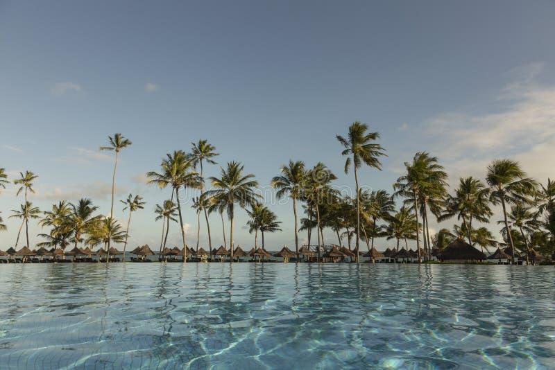 Piscine avec des palmiers près de l'océan pendant un beau coucher du soleil photo stock