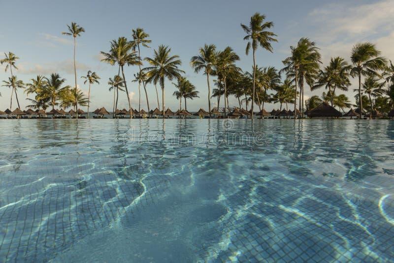 Piscine avec des palmiers près de l'océan pendant un beau coucher du soleil photographie stock libre de droits