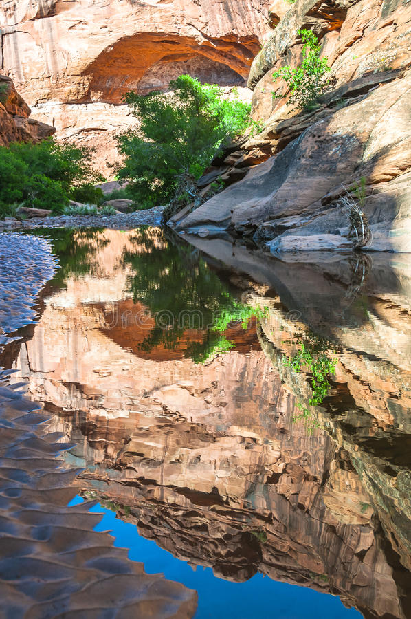Piscine de l'eau - Hunter Canyon Hiking Trail Moab Utah photos stock