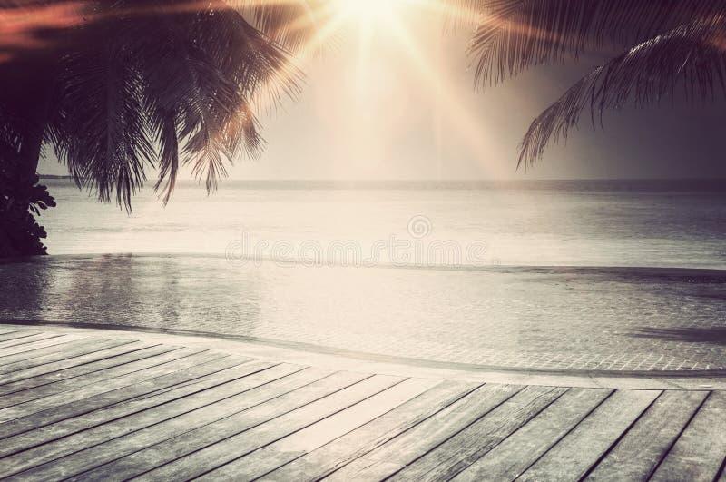 Piscine de luxe d'infini sur les Maldives photo stock