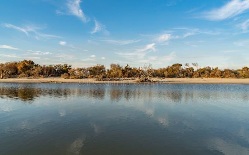 Piscine de marée sur la plage de folie photos libres de droits