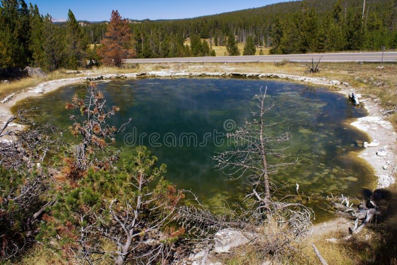Piscine en cuir en parc national de Yellowstone photos stock