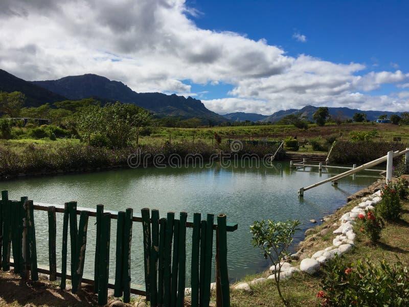 Piscine Nadi voisin, Fidji de boue de Sabeto photographie stock libre de droits