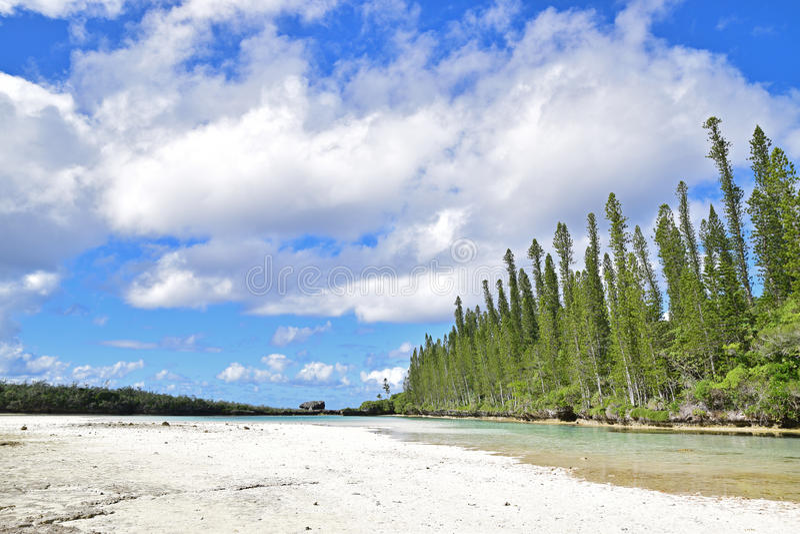 Piscine naturelle aux goupilles de DES d'Ile avec la grande étendue de la plage sablonneuse blanche image libre de droits