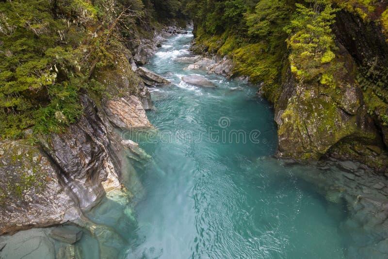 Piscines bleues, route de Haast, Nouvelle-Zélande photos libres de droits