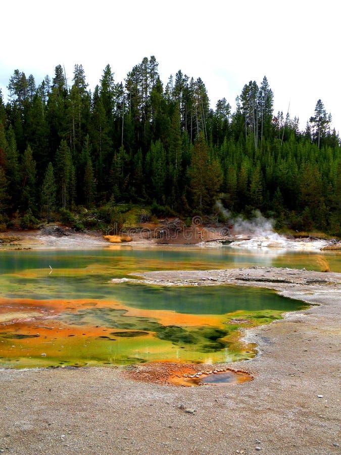 Piscines colorées de Yellowstone photos stock
