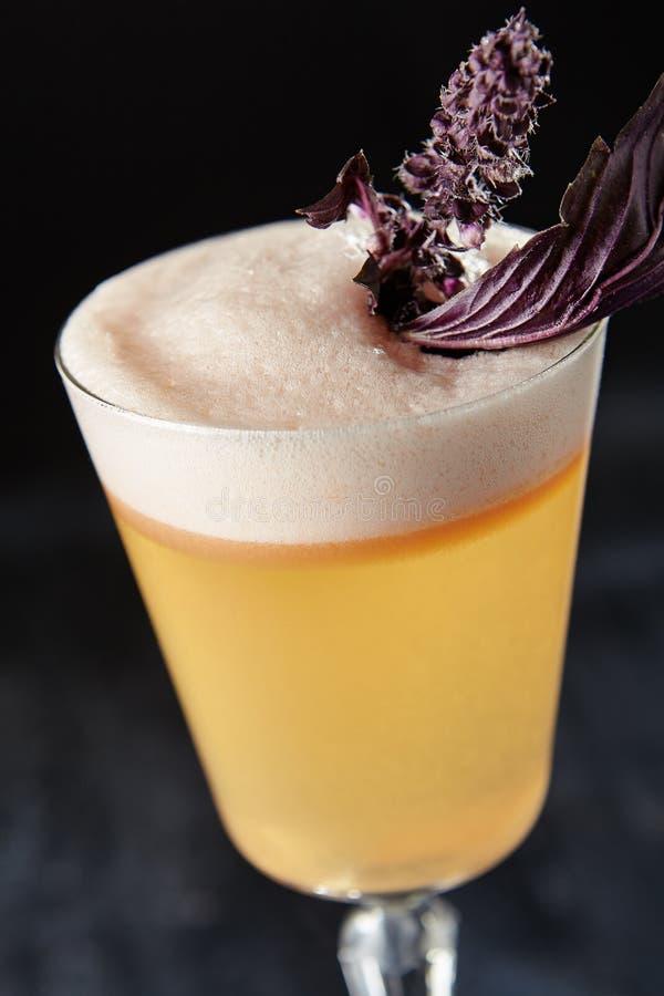 Pisco aigre avec la rhubarbe et le bitter d'angustura sur Backgroun noir photo stock