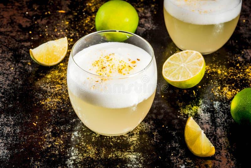 Pisco tradicional chileno do licor ácido imagem de stock