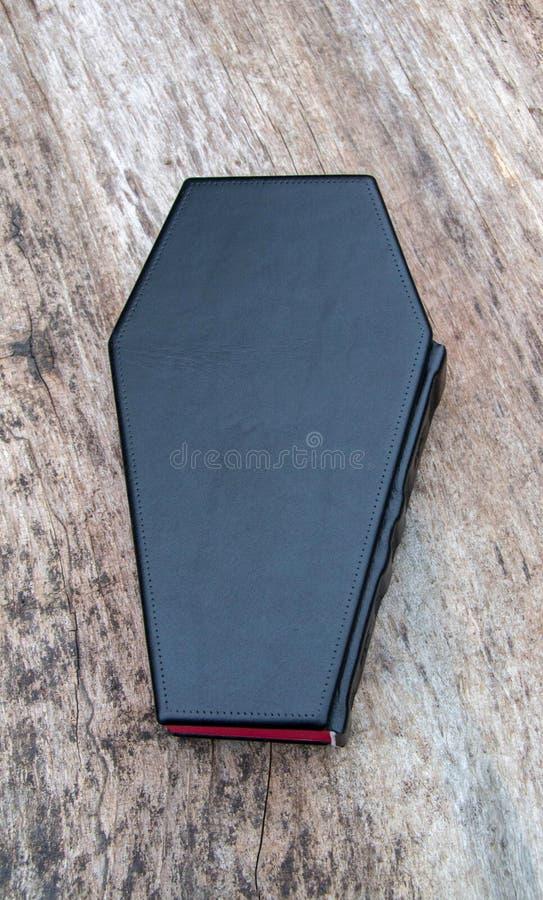 Piska boken i form av kistan, med Ankh arkivbild