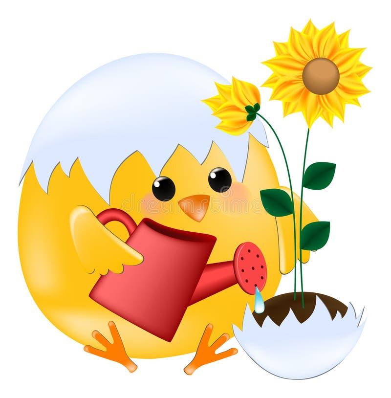 pisklęcy słoneczniki ilustracji