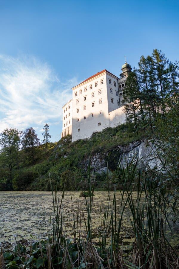 Piskova在Ojcow谷的skala城堡在南波兰 图库摄影