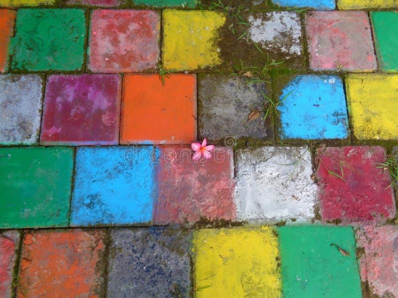 Piso colorido cubierto por la naturaleza imagenes de archivo