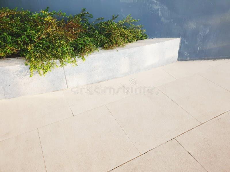 piso de tejas y esquina de las plantas fotografía de archivo