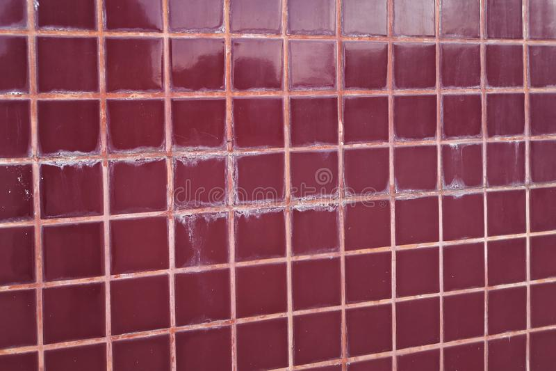 Piso tejado en manchas y hongo de la selección del uso erróneo del retrete El concepto de humedad y de suciedad imágenes de archivo libres de regalías
