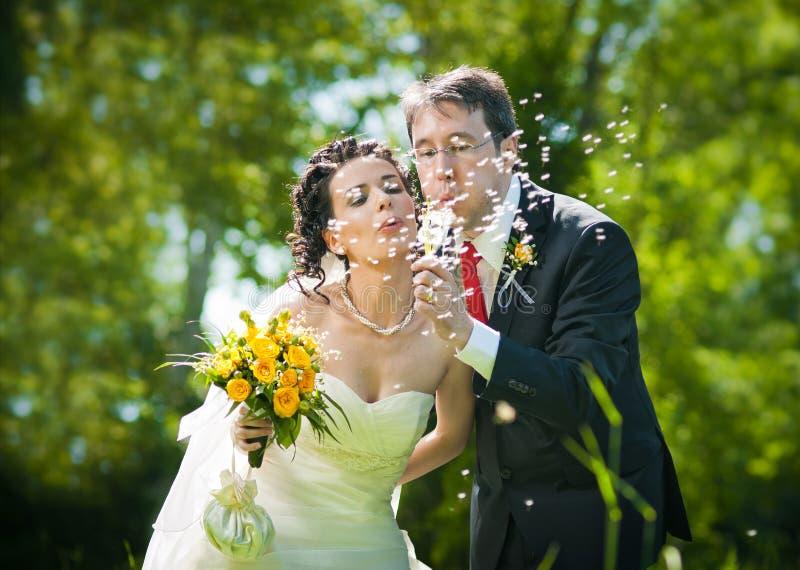 Pissenlit de soufflement de mariée et de marié photos stock