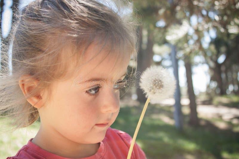 Pissenlit de soufflement de petite fille en parc image libre de droits
