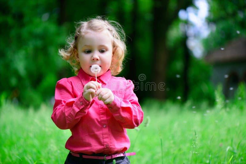 Pissenlit de soufflement mignon de petite fille images libres de droits