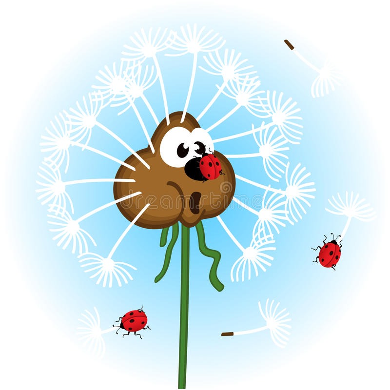 Pissenlit et coccinelle illustration stock
