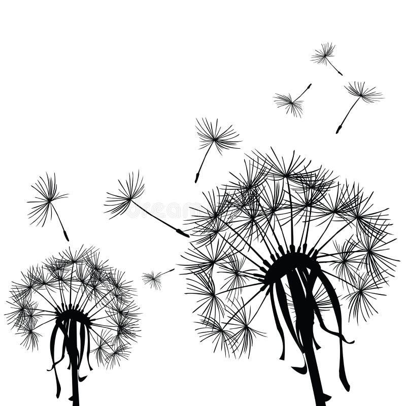 Pissenlits dans le vent illustration de vecteur