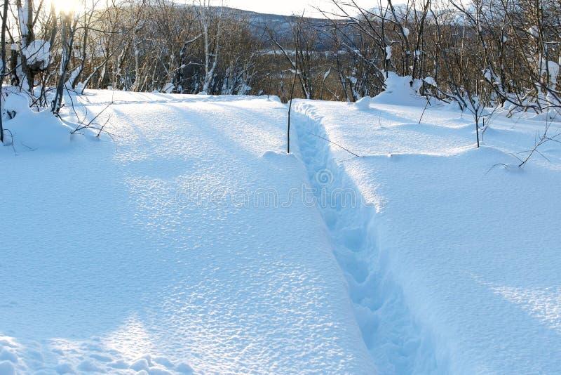 A pista batida um trajeto na neve A textura bonita da neve fotos de stock royalty free