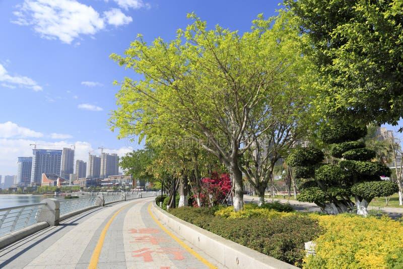 Pista ciclabile al fronte lago del lago del haicang fotografia stock libera da diritti