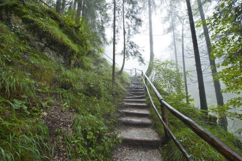 Pista d'escursione alpina fotografie stock