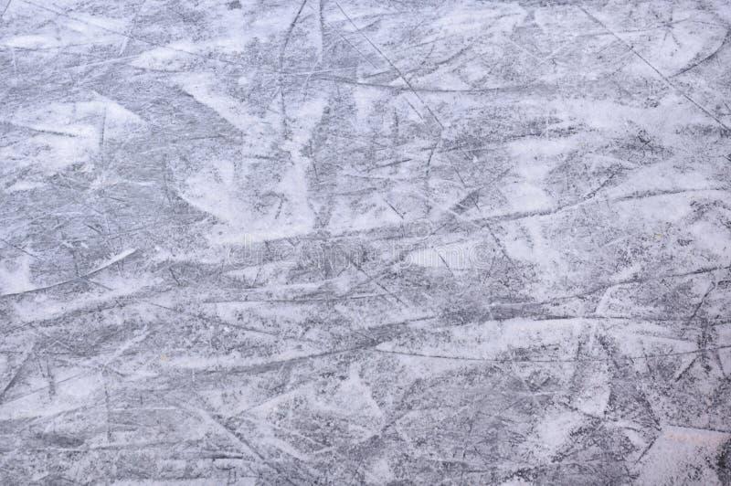 Pista de gelo de patinagem imagem de stock royalty free