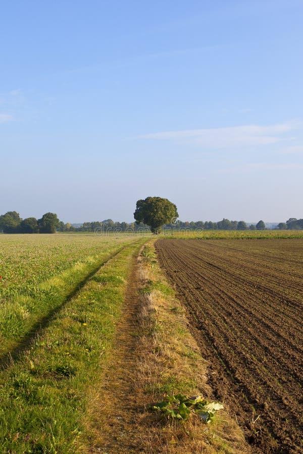 Pista de granja del país de Yorkshire fotos de archivo