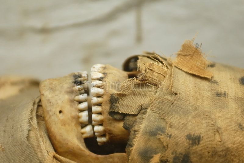 Pista de la momia imágenes de archivo libres de regalías
