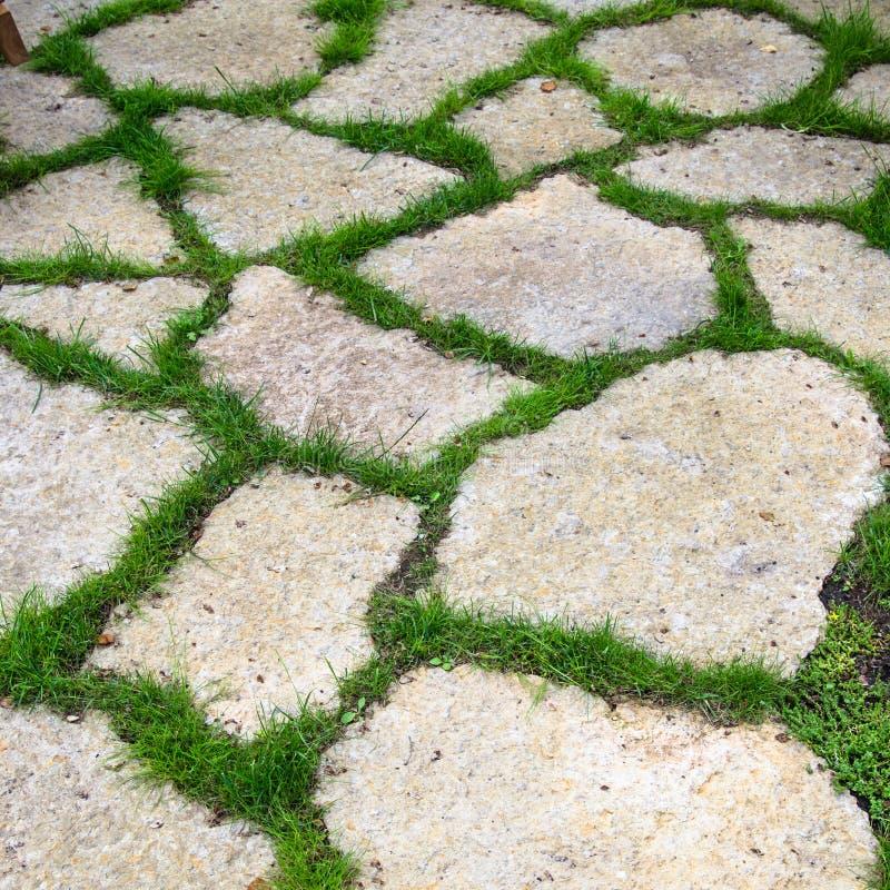 Pista de las losas de la piedra caliza en el jard n foto - Losas de jardin ...