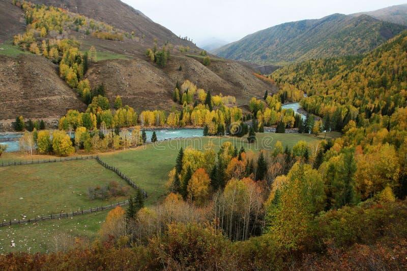 Pista de pasto con el río de Kanas fotos de archivo