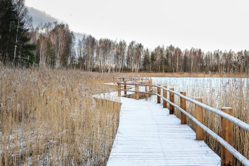 Pista de ponte de madeira ao longo da costa do lago coberto pela primeira neve imagens de stock