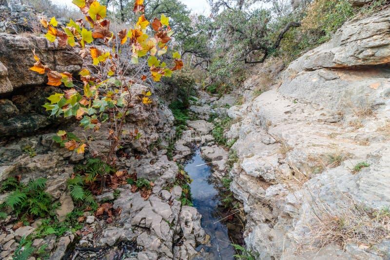 Pista de senderismo al río de Pedernales en el rancho de Reimers en Tejas imagenes de archivo