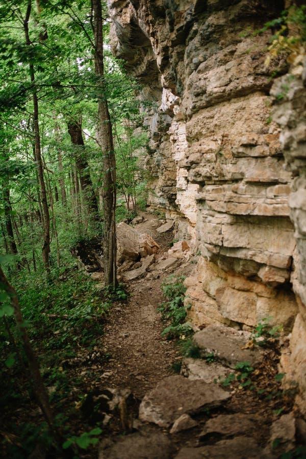 Pista de senderismo debajo de un acantilado craning en el bosque foto de archivo