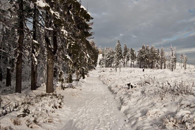 Pista de senderismo del invierno cerca de la colina de Barania Gora en las montañas de Beskid Slaski fotos de archivo libres de regalías