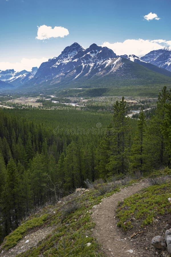 Pista de senderismo del país de Kananaskis Rocky Mountains Springtime Alberta Canada imagen de archivo