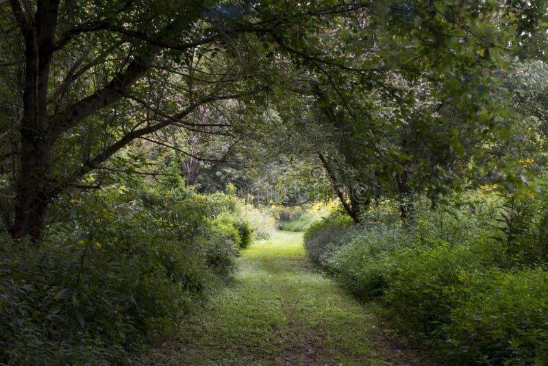 Pista de senderismo en la isla media imagen de archivo libre de regalías