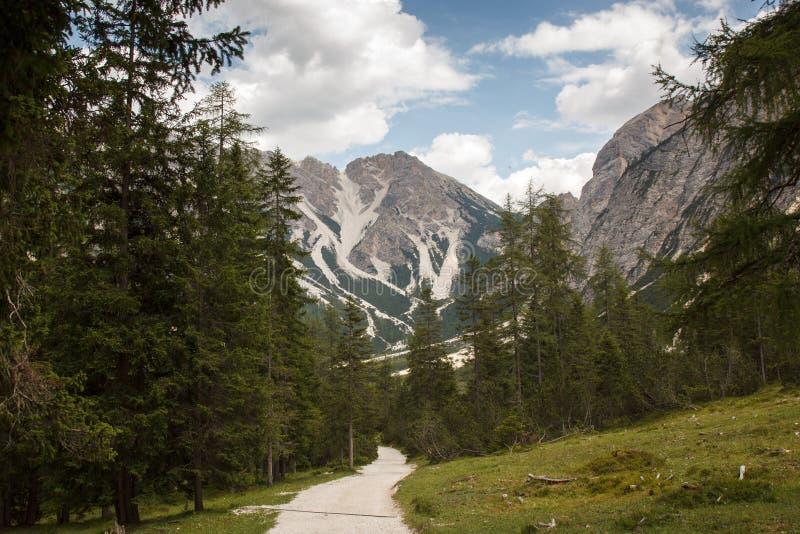 Pista de senderismo en las montañas de Italia fotos de archivo libres de regalías