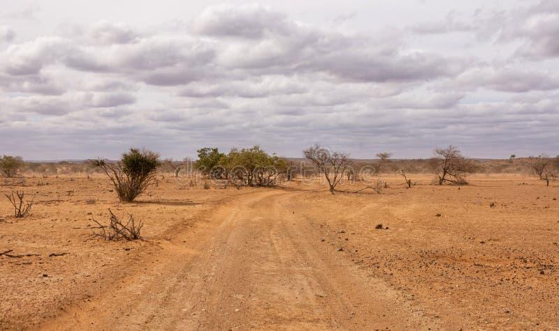Pista de tierra del Limpopo imagen de archivo