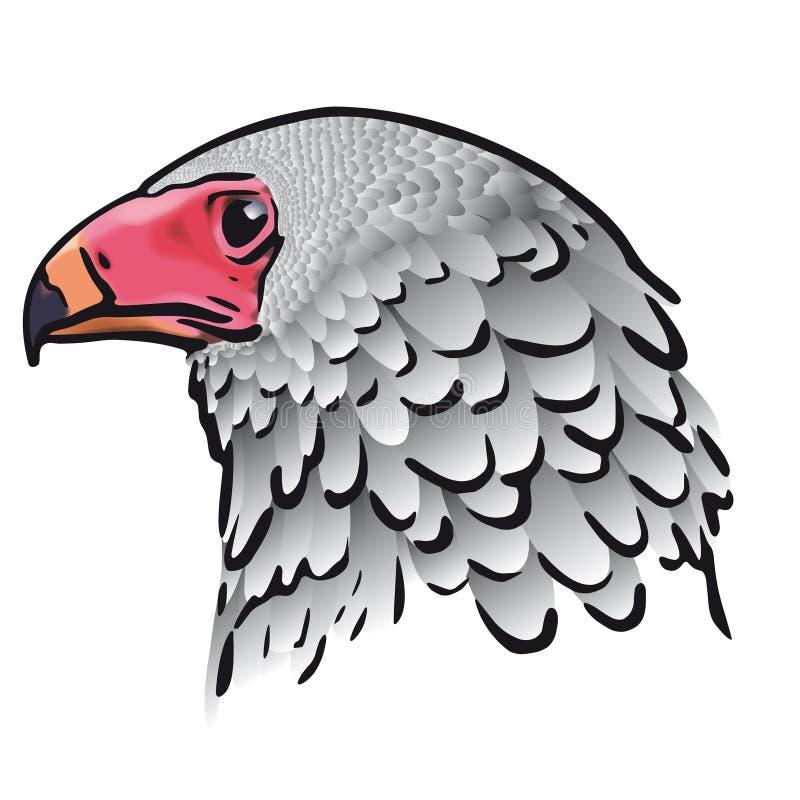 Download Pista del águila (vector) ilustración del vector. Ilustración de majestuoso - 7276942